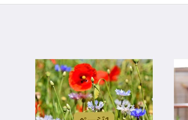 Googleフォトの写真をiPhoneから印刷する方法